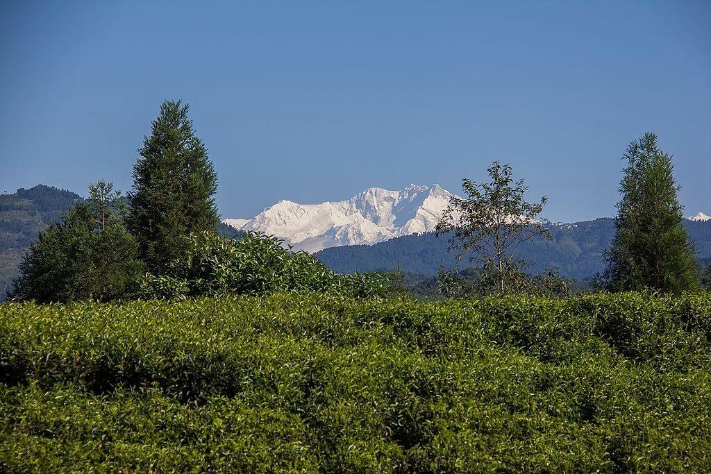 Kanchenjunga Trekking in himalayas